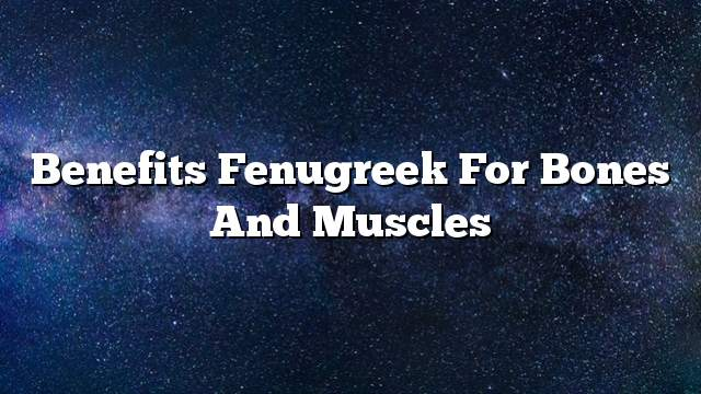 Benefits fenugreek for bones and muscles