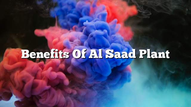 Benefits of Al Saad plant