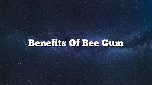Benefits of bee gum