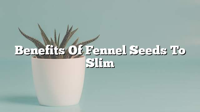 Benefits of fennel seeds to slim