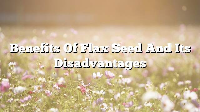 Benefits of flax seed and its disadvantages