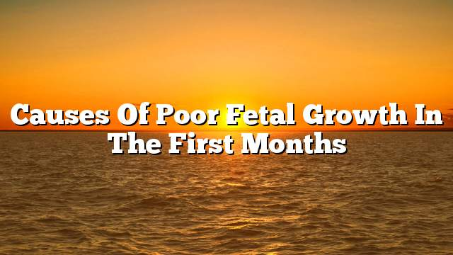 Causes of poor fetal growth in the first months