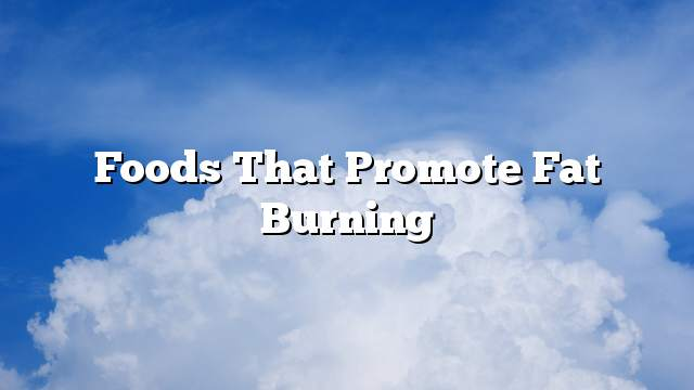Foods that promote fat burning