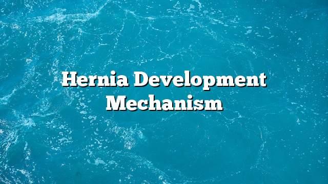 Hernia development mechanism