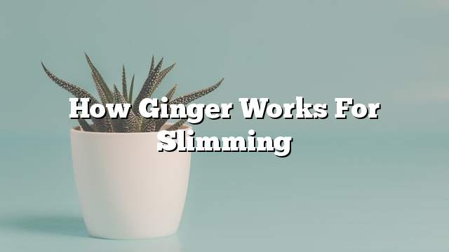 How Ginger Works For Slimming