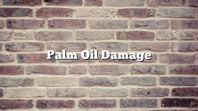 Palm oil damage