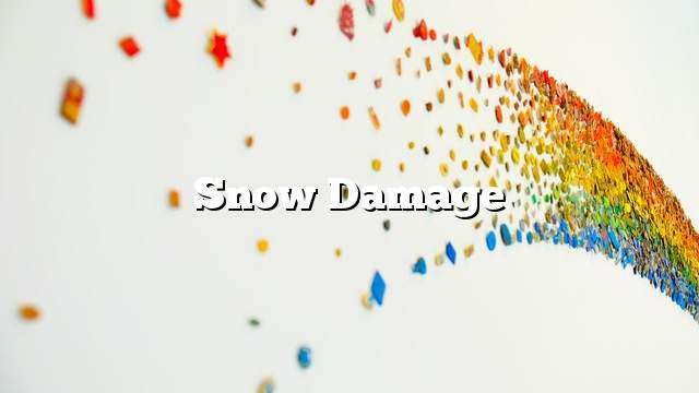 Snow damage