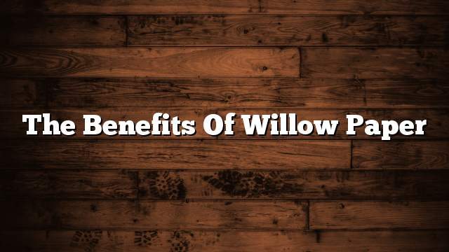 The benefits of willow paper