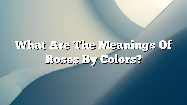 What are the meanings of roses by colors?
