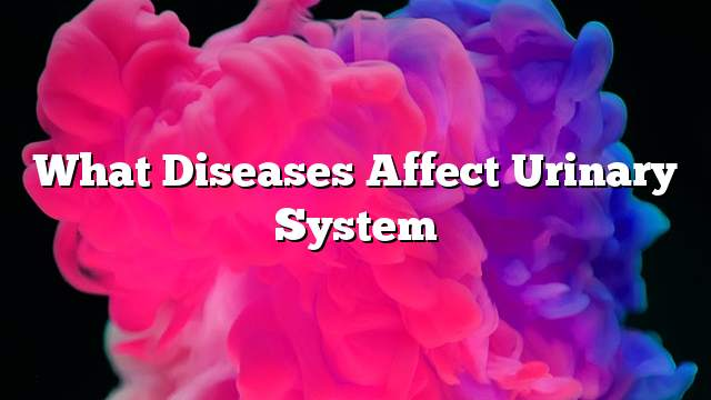 What diseases affect urinary system